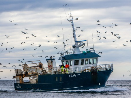 Icelandic fisheries: Sustainable and efficient