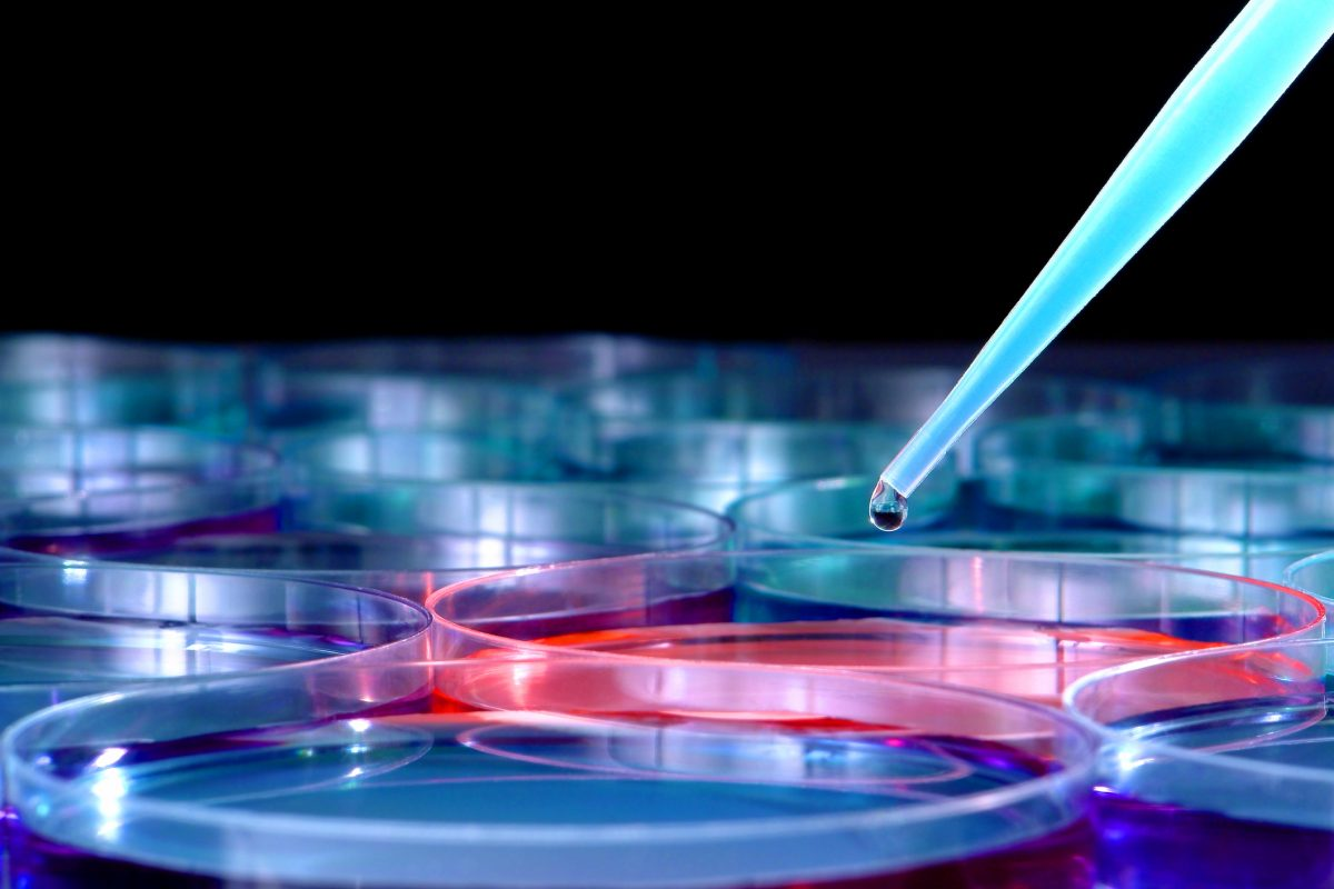 How science has contributed to cancer research