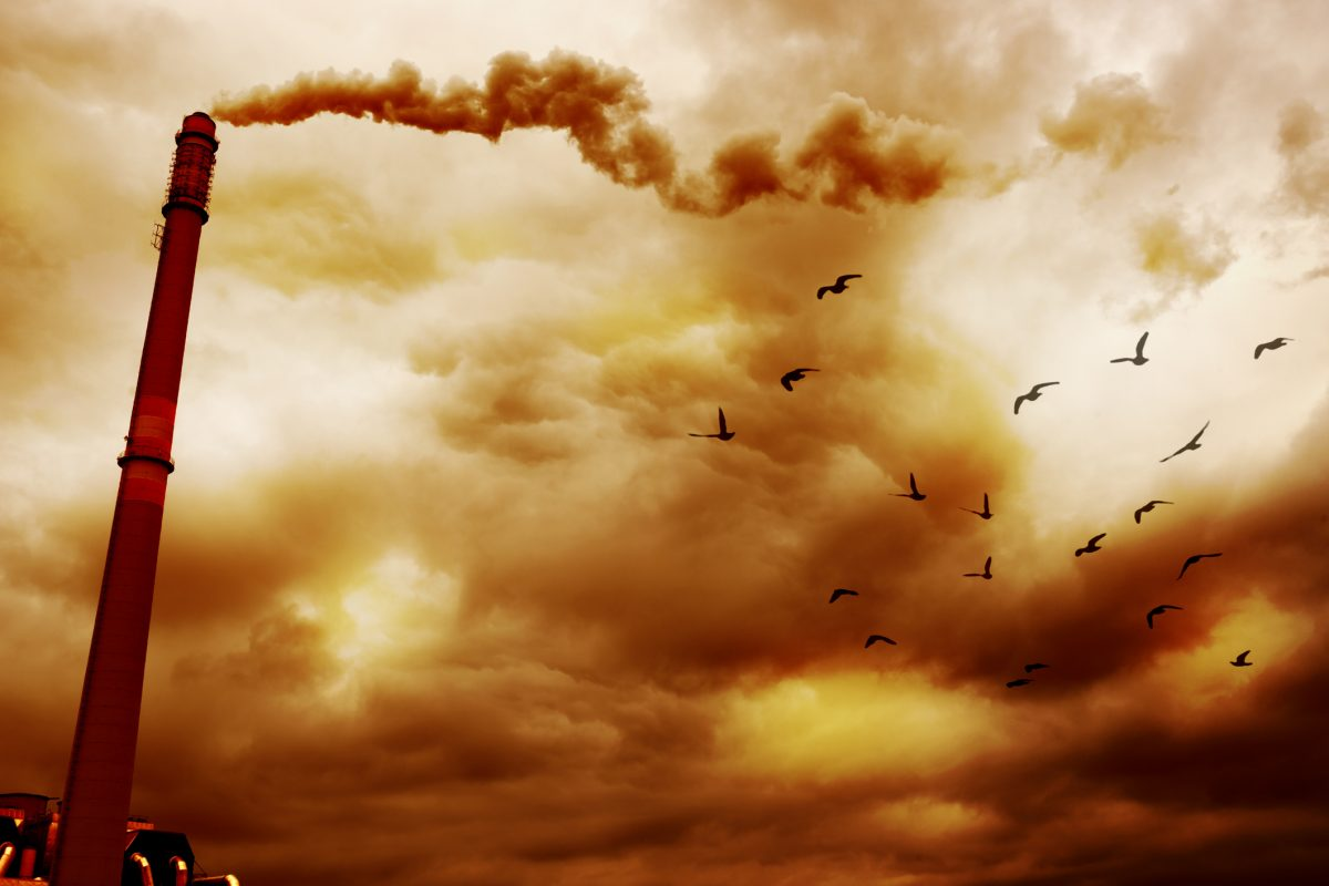 Exposure to air pollution linked to autism