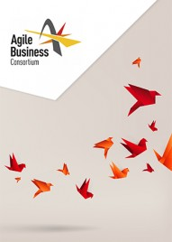 Global leadership in supporting and enabling business agility