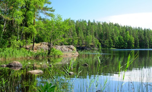 Ensuring the preservation of biodiversity in Finland