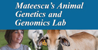 Mateescu's Animal Genetics and Genomics Lab