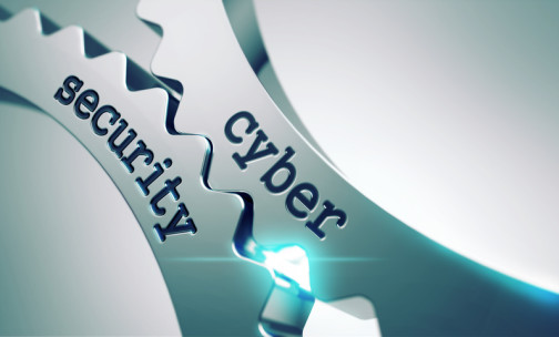 A long term strategy for cyber security